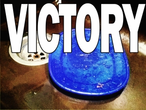 VICTORY BLUE PLATE